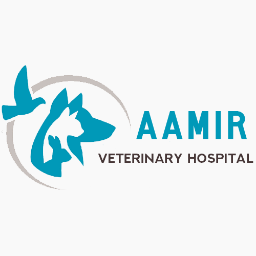 Aamir Veterinary Hospital