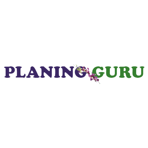 Planning Guru